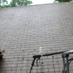 Roof powerwashing (before)